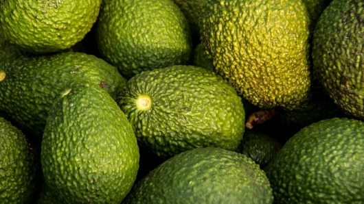 Aguacate Hass. Foto: Pixabay